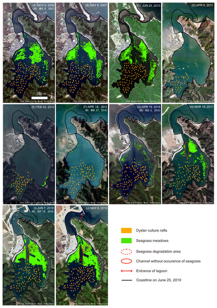 Mapping results of the oyster culture rafts and seagrass meadows, and the changes in coastline morphology in Nagatsura-ura Lagoon.