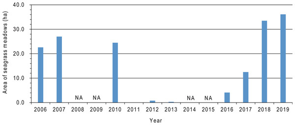 Temporal changes in seagrass meadow area in Nagatsura-ura Lagoon from 2006 to 2019.