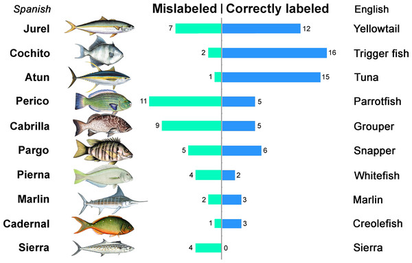 Patterns of fish mislabeling found within the 10 most common commercial names in La Paz, Mexico.