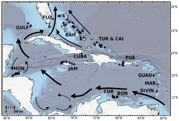 Distribution map of investigated HBOI and other desma-bearing tetractinellids and Vetulinidae from the TWA.