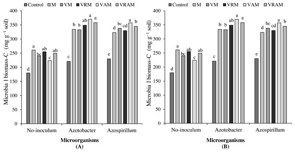 Mean comparison of effect of organic amendments on soil microbial biomass–C under inoculation with N2-fixing bacteria in 2017 (A) and 2018 (B).