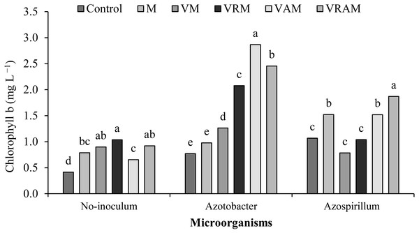 Mean comparison of effect of organic amendment on chlorophyll b under inoculation with N2-fixing bacteria.
