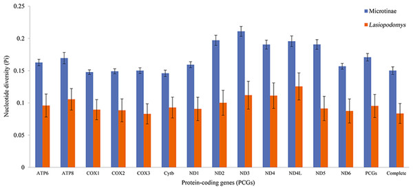 Nucleotide diversity of each protein-coding gene (PCG), concatenate PCG, and whole mitochondrial genomes of Microtinae (blue) and Lasiopodomys (orange).