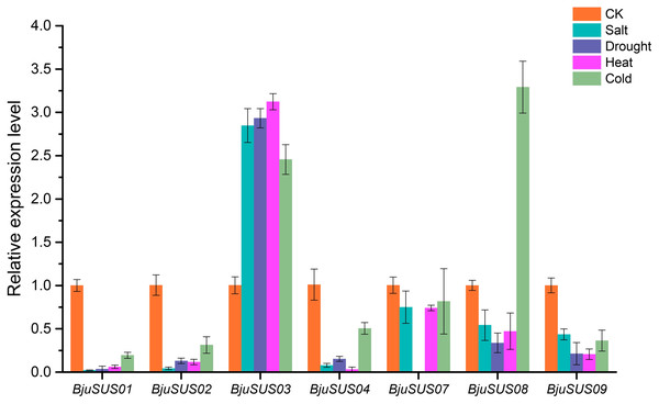 Expression profiles of BjuSUSs in response to treatment with salt, drought, heat temperature and cold temperature stress.