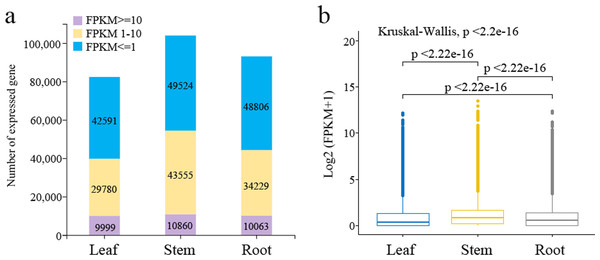 Analysis of expression profiles in Pueraria lobata three tissues (roots, leaves, and stems).