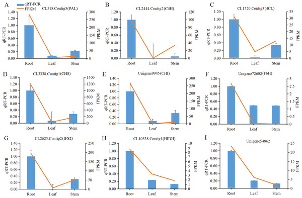 The qRT-PCR analysis of nine candidate unigenes encoding enzymes involved in isoflavonoid biosynthesis in different tissues of Pueraria lobata.