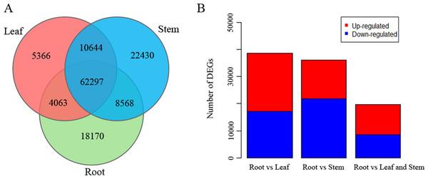 Expression of unigenes in Pueraria lobata root, stem, and leaf tissues.