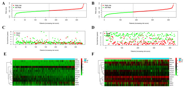 Validation of the prognostic metabolic gene signatures in the TCGA and GEO.