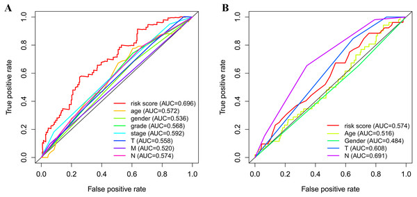 Receiver operating characteristic curves of the clinical characteristics and prognostic gene signatures.