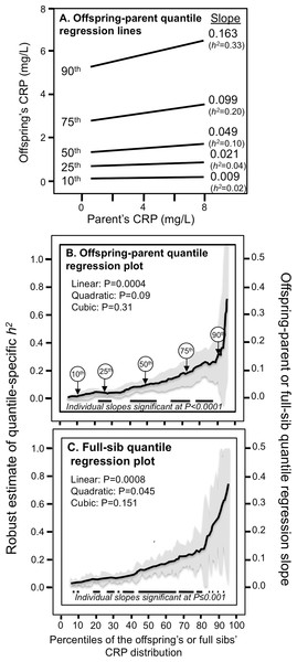 Quantile-specific offspring-parent (βOP) and full-sib regression slopes (βFS) for untransformed CRP concentrations.
