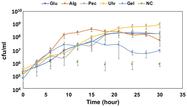 Growth confirmation of QB4 cultured with four different uronic acid-containing polysaccharides, alginate (Alg), pectin (Pct), Ulvan (Ulv), and gellan gum (Gel).