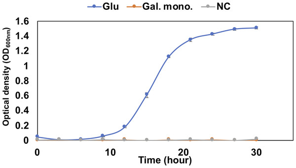 Growth confirmation of QB4 cultured with saturated galacturonate (Sat. Gal).