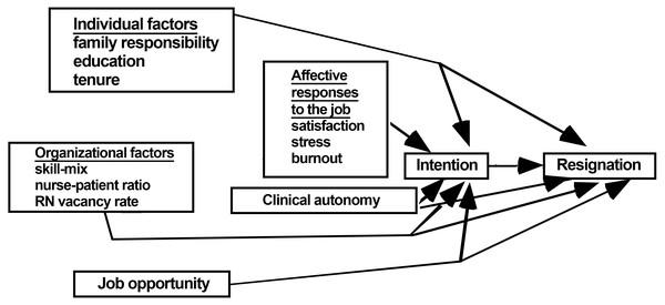 Lake's model of nurse turnover (Lake, 1998).