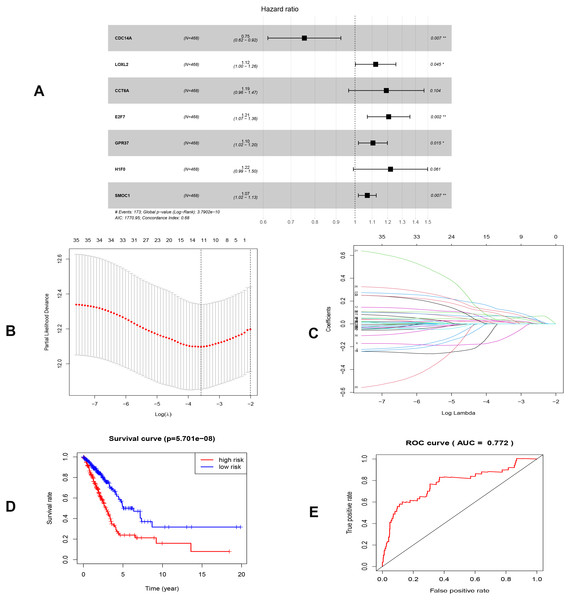Construction of the prognostic model involving the key RNAs of the ceRNA network in LUAD.