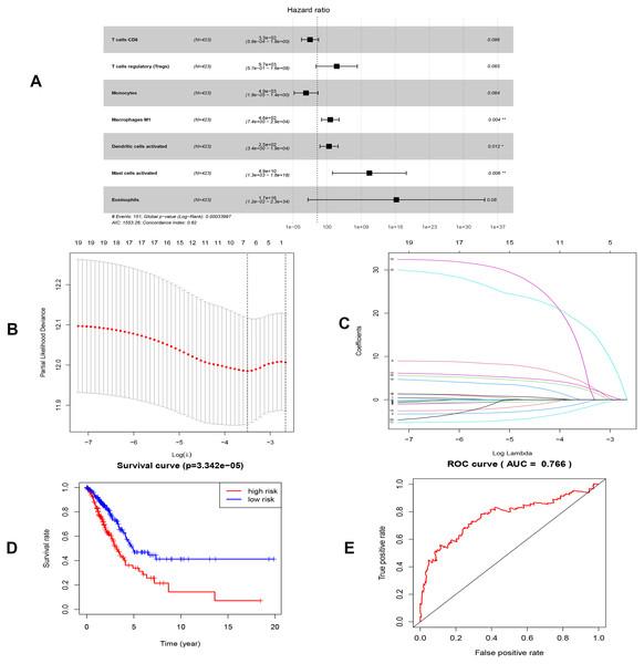 Construction of the prognostic model based on key immune cells in LUAD.