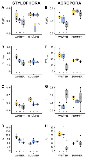 Photophysiology of algal symbionts of Stylophora pistillata (A–D) and Acropora eurystoma (D–H) exposed to below annual minima temperatures.