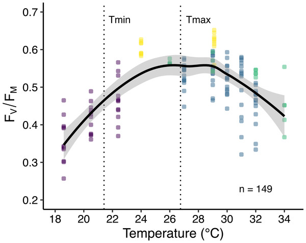 Thermal performance curve of maximum quantum yield of photosystem II (FV∕FM) of corals in Eilat.