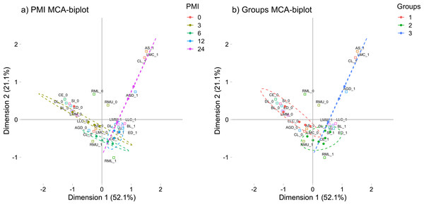 Multiple correspondence analysis (MCA) between the early post-mortem interval and the presence of morphological changes in rats.
