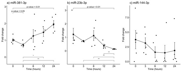 Gene expression analysis of miRNAs miR-381-3p, miR-23b-3p and miR-144-3p in rat skeletal muscle throughout the early different post-mortem interval.