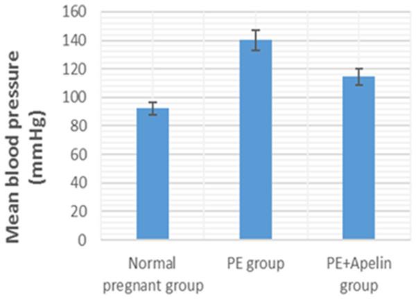 Mean arterial BP in the studied groups.