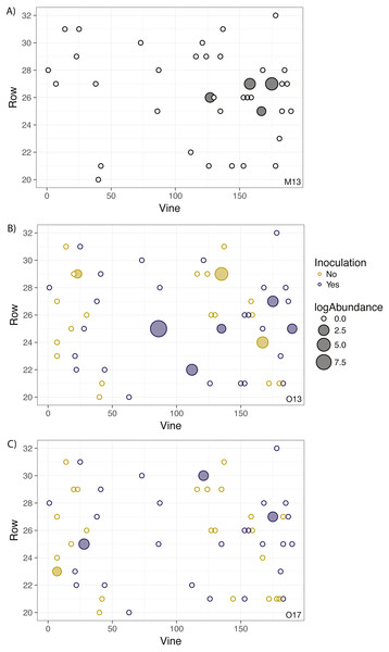 Geographic distribution and abundance of the target isolate, R. irregulare DAOM 197198, in soil samples taken in May 2013 (A) and October 2013 (B), and October 2017 (C).
