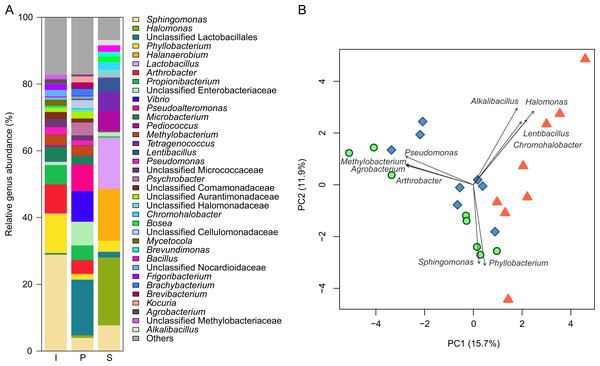 Analysis of microbiota at the genus level during each fermentation process.