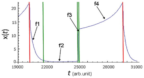 Phases of x(t) parameter evolution demonstrated onthe example of one full cycle of oscillation of its values.