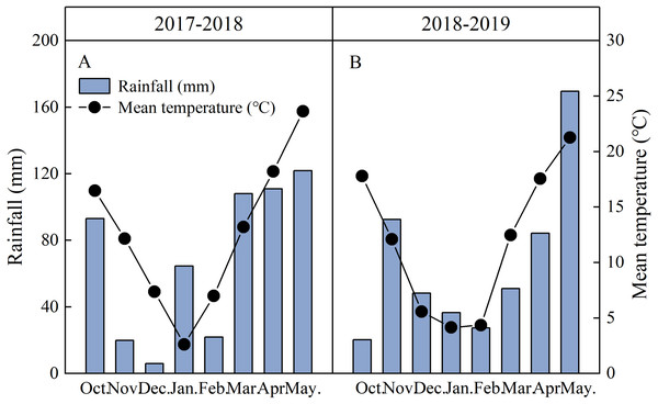 Monthly total rainfall and monthly mean temperatures recorded on-site in 2017–2019 wheat-growing seasons in Jingzhou, Hubei Province, China.