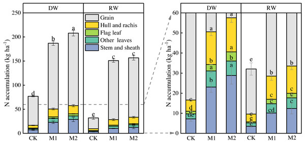 Effects of nitrogen management on nitrogen accumulation (kg ha−1) in organs of two wheat cropping systems at maturity.