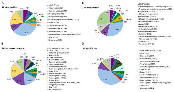 Comparative analysis of putative toxins identified from the transcriptomic datasets.