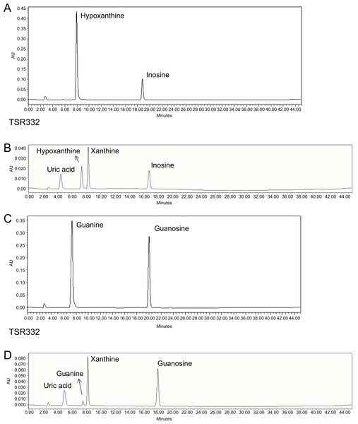 Resolution of purines and purine metabolites by HPLC analysis.