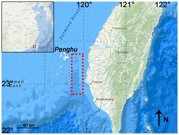 Map showing the sampling area in the Penghu Channel (dashed rectangle).