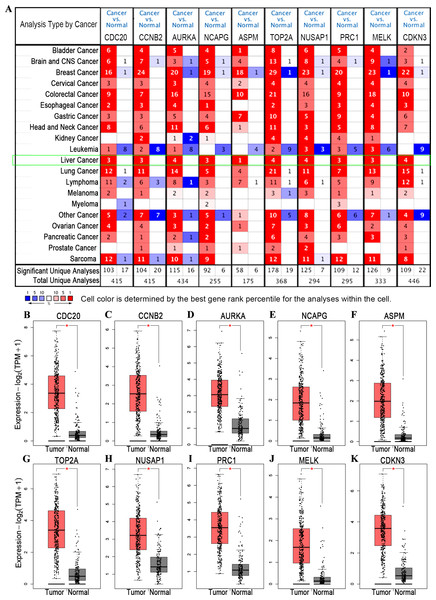 Differential analysis of transcription levels of hub genes in hepatocellular carcinoma.