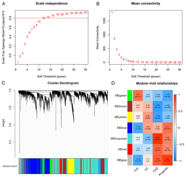 Weighted gene co-expression network analysis.