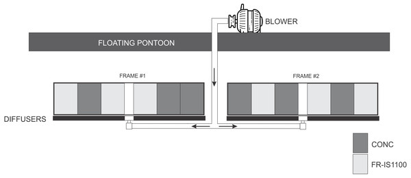 Schematic of the experimental setup where concrete (CONC) and fouling release (Intersleek 1100SR, FR-IS1100) panels (300×400 mm) were treated with bubbles while fixed in a vertical orientation.
