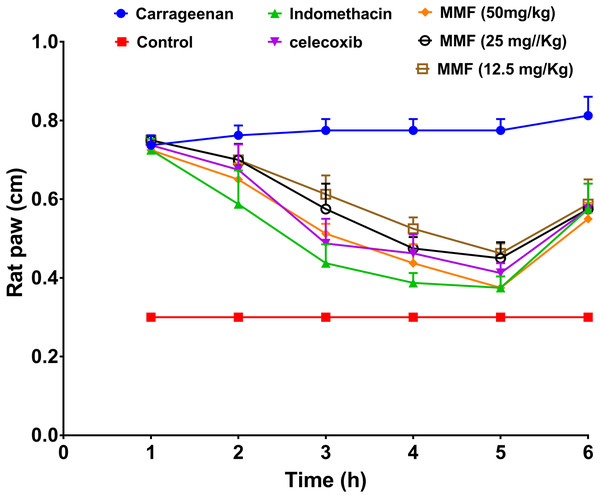 The results of rat paw test for evaluation of the anti-inflammatory activity of mycophenolate mofetil.