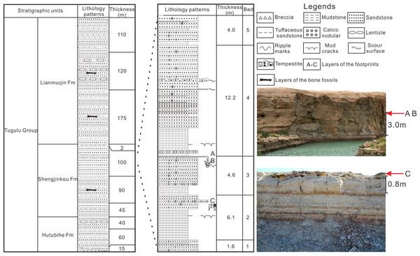 The comprehensive column of Huangyangquan Reservoir tracksite 1 in the Wuerho region.
