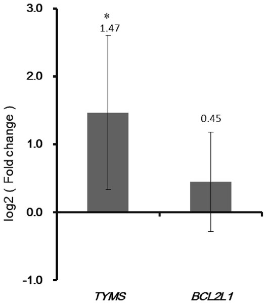 Validation the expression of TYMS and BCL2L1 by qRT-PCR.