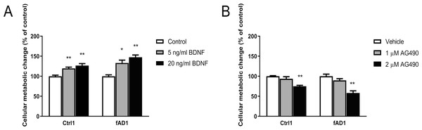 Different effect of BDNF, AG490 and DMSO on hNPCs metabolic activity.