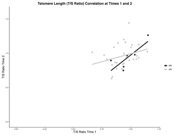 Scatter plot of correlations between telomere lengths at two time points.