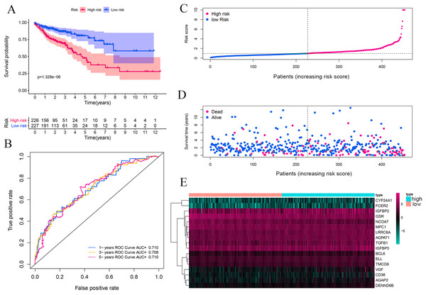 Vitamin D-related prognosis genes are significantly correlated with the overall survival of CRC in the training set.