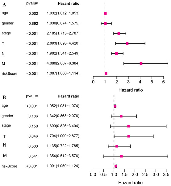 The relationship of the vitamin D-related signature and clinical factors with overall survival in TCGA dataset.