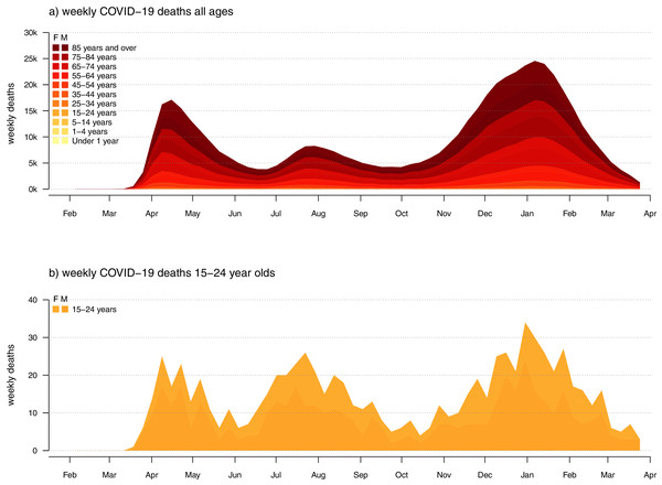 Weekly confirmed COVID-19 deaths for (A) all ages; and (B) individuals aged 15–24 years old in the U.S.