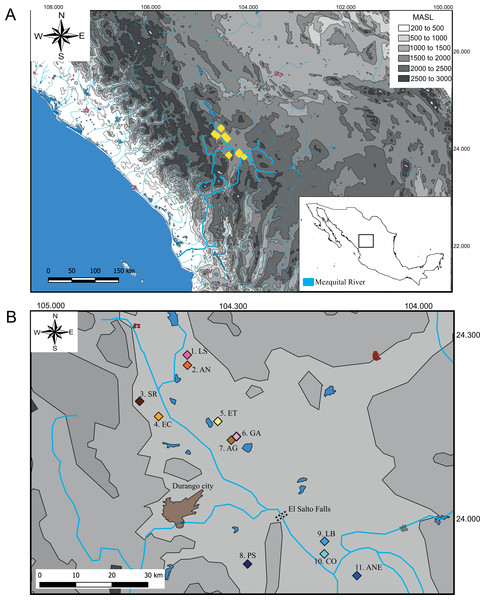 Sampling locations of genus Characodon.