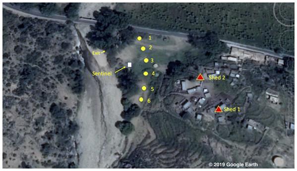 Map of the study area © 2019 Google Image Landsat/Copernicus.