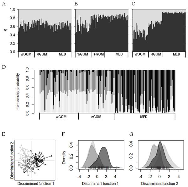 Clustering of ABFT larvae genetic diversity.