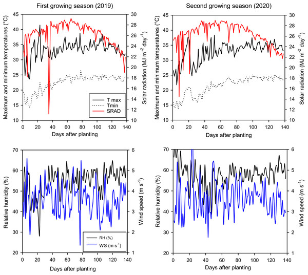 Daily climatic data of maximum and minimum temperatures (Tmax and Tmin), solar radiation (SRAD), relative humidity (RH), as well as wind speed (WS) in the studied area over two growing seasons (2019 and 2020).