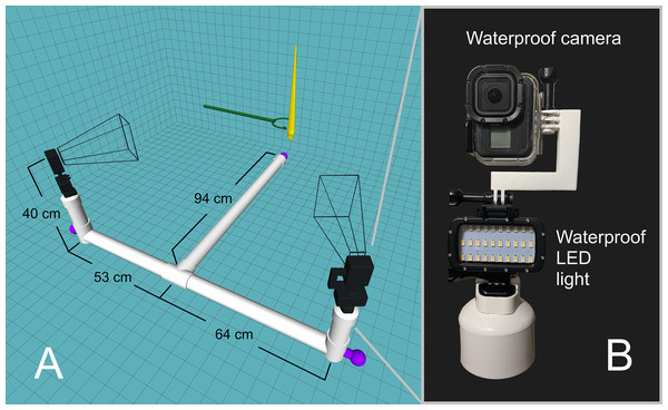 Underwater camera rig used for 3D motion tracking.