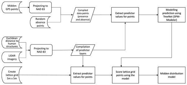 Flow chart of the data analysis.