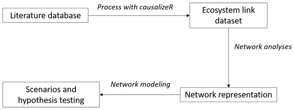 Workflow for text analyses.